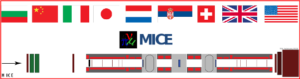 MICE countries